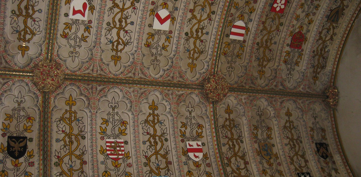 Shield ceiling Image